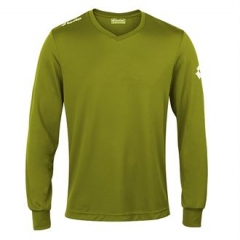Jersey long sleeve team evo