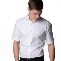 Superior Oxford shirt short sleeve