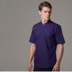 Mandarin collar fitted shirt short sleeved