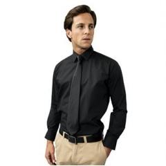 Supreme poplin long sleeve shirt