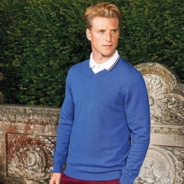 Men's cotton blend v-neck sweater