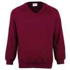 Kids Coloursure™ v-neck sweatshirt