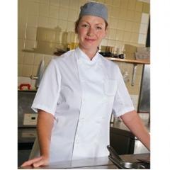 Budget short sleeve chef's jacket