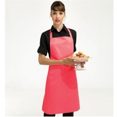 Electric bib apron