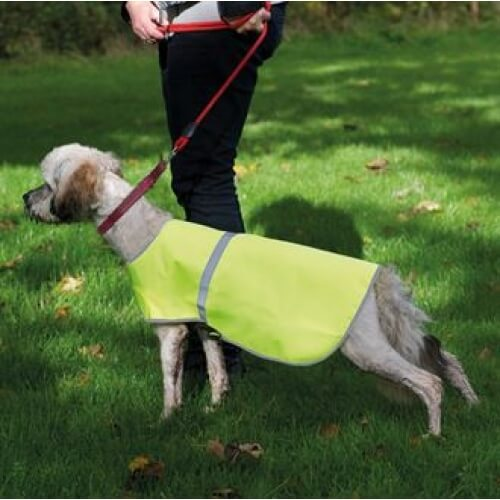 personalised hi vis reflective dog vest